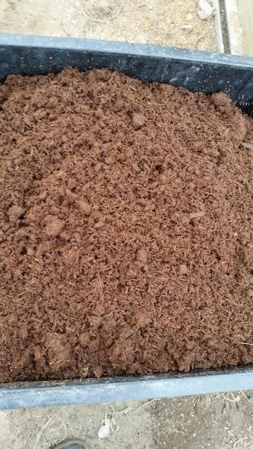 竹チップ堆肥