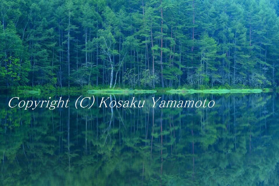 「東山魁夷」の風景 (長野県 御射鹿池)