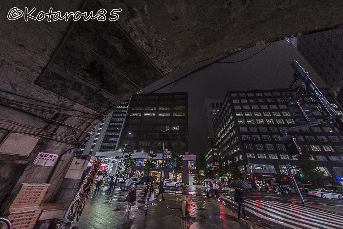 降り続く雨 20150926