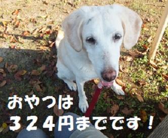 2015092210.jpg