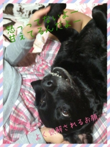 こてつクン (1)