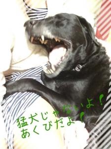 こてつクン (2)