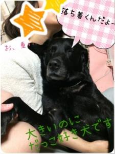 こてつクン (4)