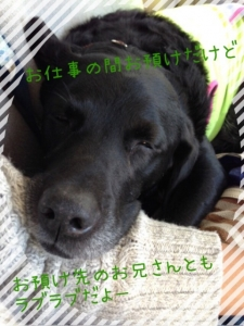 こてつクン (6)