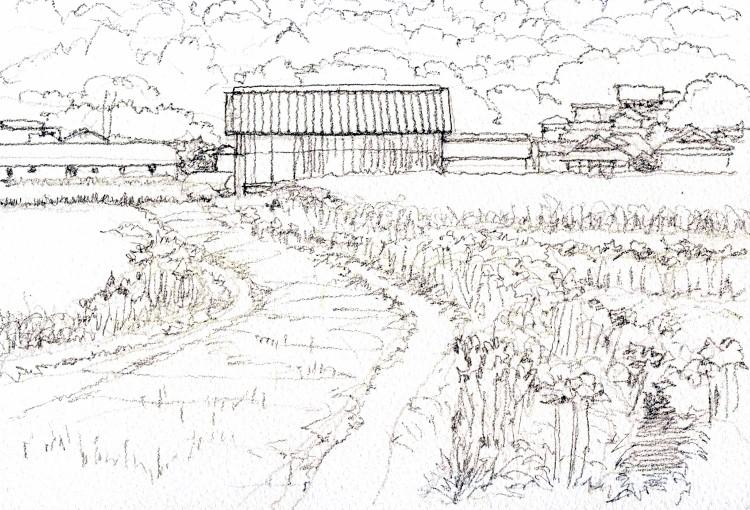 彼岸花の咲く頃 デッサン (750x510)
