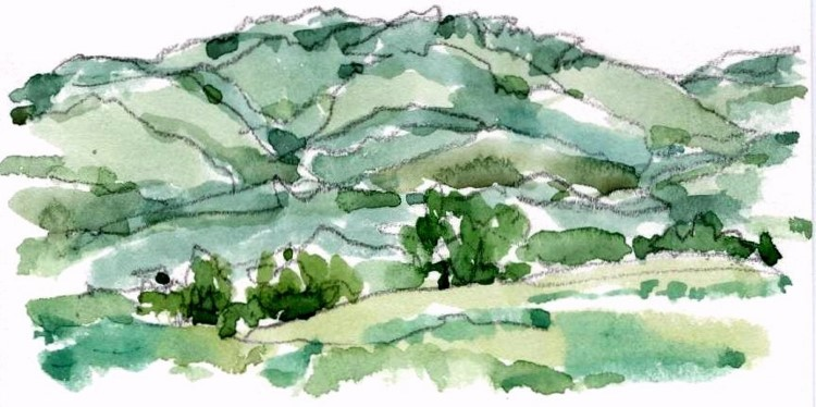 北陸の夏の山 (750x374) (750x374)