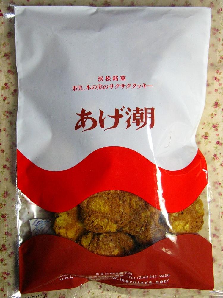 2014_04_06 浜松:あげ潮 (1)