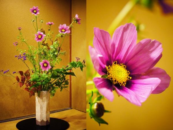 9月の花1