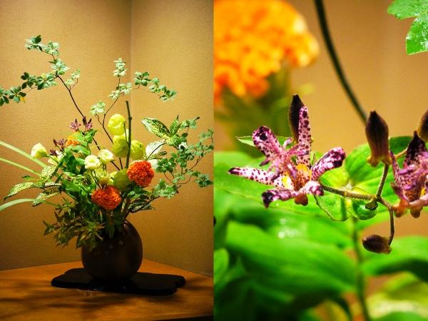 9月の花2