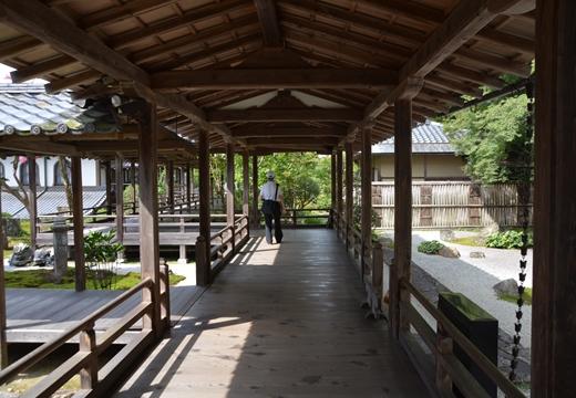 京都南禅寺201509 (324)_R
