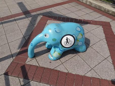 象の鼻のゾウ
