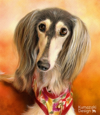 ペット肖像画 ペットの絵 ペット画 似顔絵 イラスト 犬 いぬ 小犬 子犬 色えんぴつ画 色鉛筆画