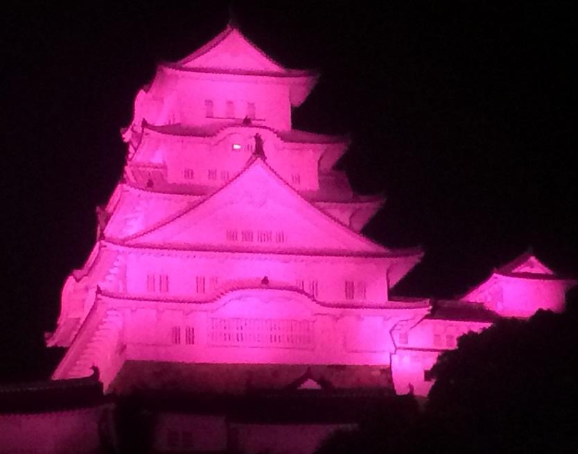 赤紫の姫路城