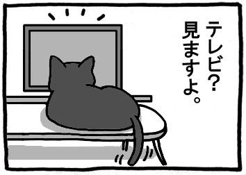 157.jpg