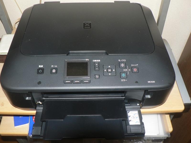 P1010443 (800x600)