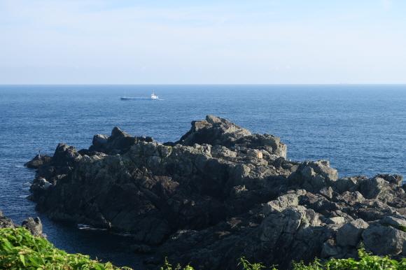 潮岬の芝キャンプ場3