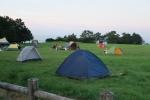 潮岬の芝キャンプ場10