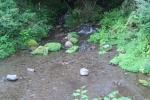 沢水キャンプ場6