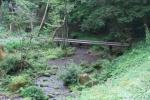 沢水キャンプ場5