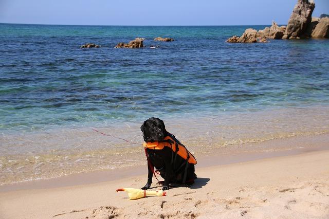 砂浜で休憩
