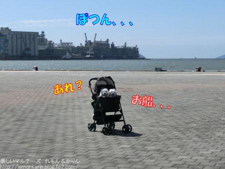 20150823_3.jpg