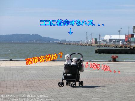 20150823_4.jpg