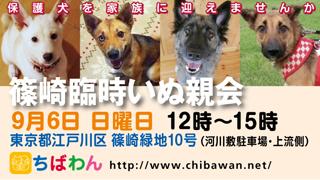 event-150906-shinozakirinji_banner_02.jpg