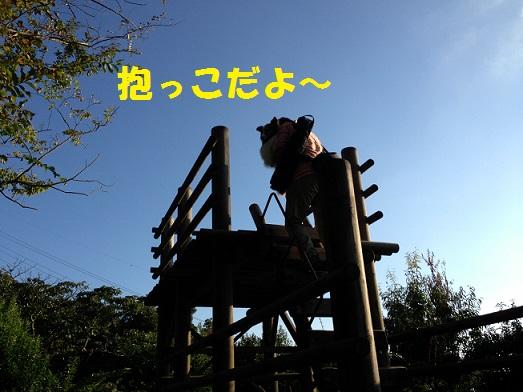 公園991