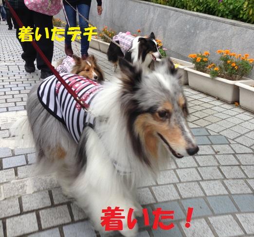 鎌倉散歩4