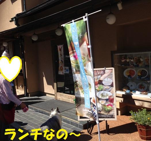 江ノ島散歩96