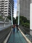 陸橋をわたって