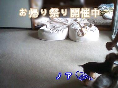 2015_09_15_14_16_30_5.jpg