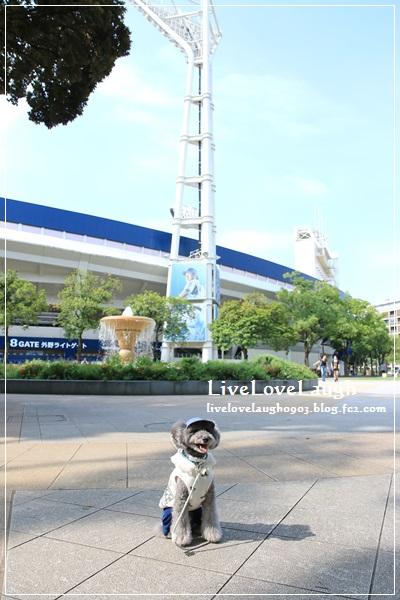 IMG_4047横浜2