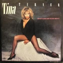 Tina Turner - Whats Love Got To Do With It1