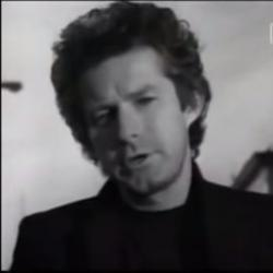 Don Henley - The Boys of Summer2
