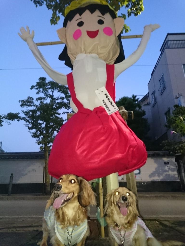 20150823Kakashi4.jpg