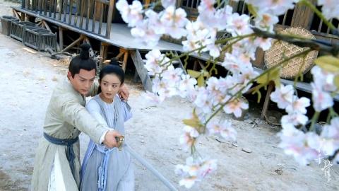 journey_of_flower_14_03_024.jpg