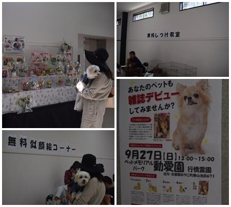 動愛園16
