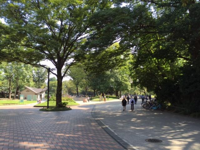 28日上野公園