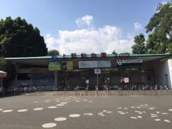 28日上野動物園