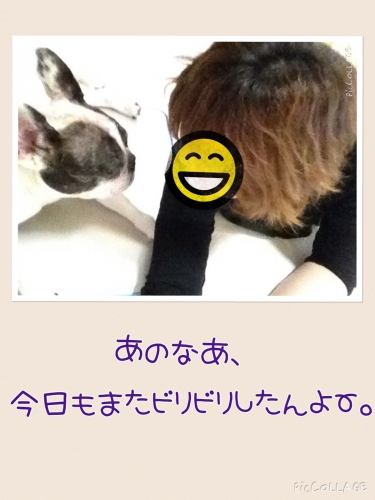 2015083119511327d.jpg