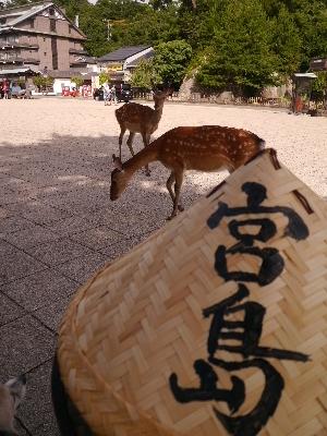 広島8−17