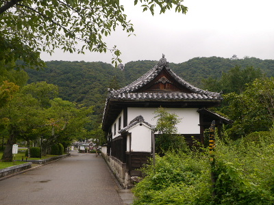 広島11−1