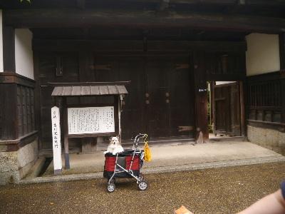 広島11−3