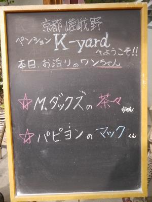 広島12−4