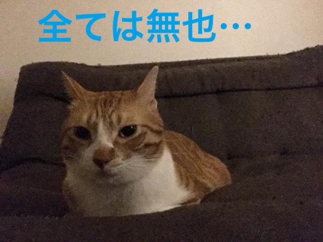 fc2blog_201509212112545c4.jpg