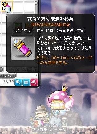 Maple13148a.jpg