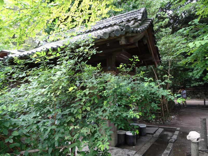 梨木神社3