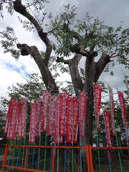 六孫王神社11