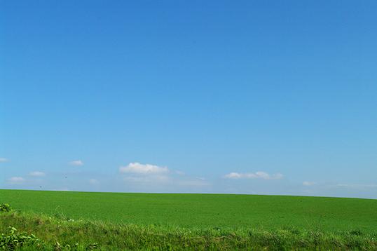 photo0000-0611草原
